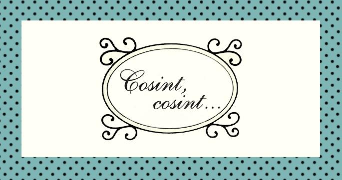 Cosint, cosint